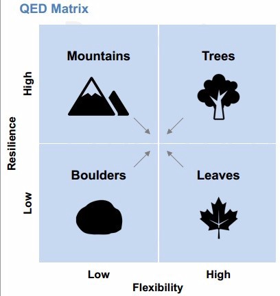 Qed Matrix graph. Flexibility to resilience